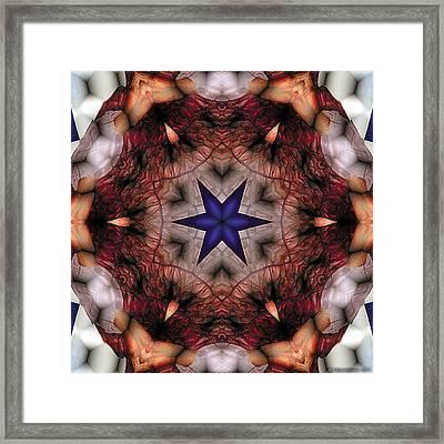 Mandala 14 Framed Print by Terry Reynoldson