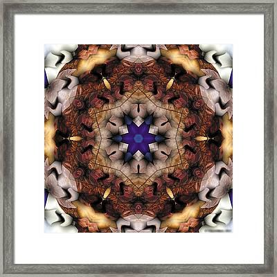 Mandala 16 Framed Print