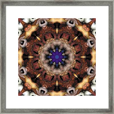 Mandala 18 Framed Print by Terry Reynoldson