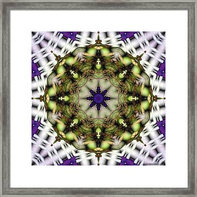 Mandala 21 Framed Print by Terry Reynoldson