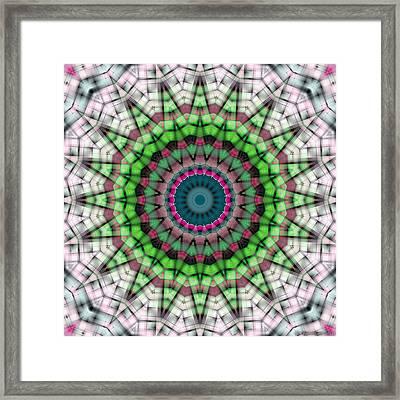 Mandala 26 Framed Print by Terry Reynoldson
