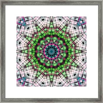 Mandala 27 Framed Print by Terry Reynoldson