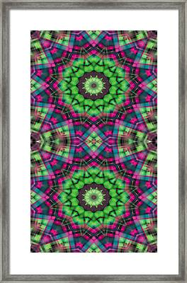 Mandala 29 For Iphone Double Framed Print by Terry Reynoldson