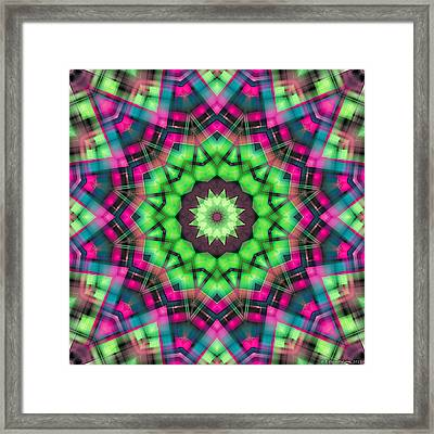 Mandala 29 Framed Print by Terry Reynoldson