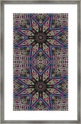 Mandala 31 For Iphone Double Framed Print by Terry Reynoldson
