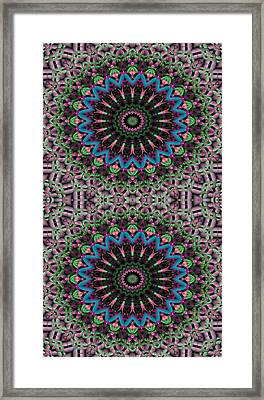 Mandala 33 For Iphone Double Framed Print by Terry Reynoldson