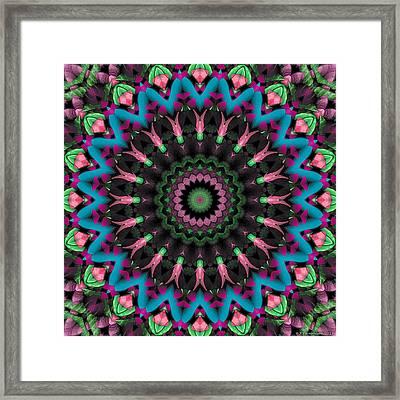 Mandala 35 Framed Print by Terry Reynoldson