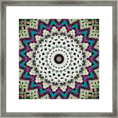 Mandala 36 Framed Print by Terry Reynoldson