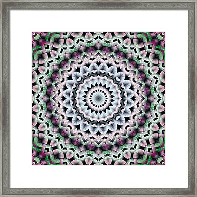 Mandala 40 Framed Print by Terry Reynoldson