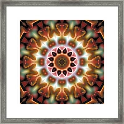 Mandala 67 Framed Print by Terry Reynoldson