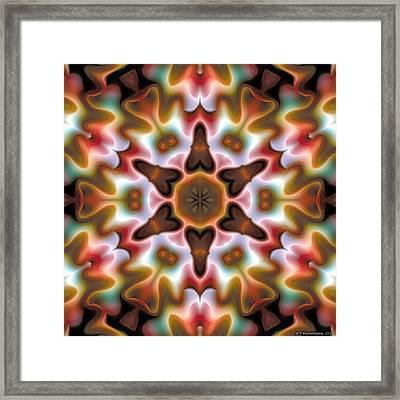 Mandala 68 Framed Print by Terry Reynoldson