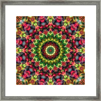 Mandala 70 Framed Print by Terry Reynoldson