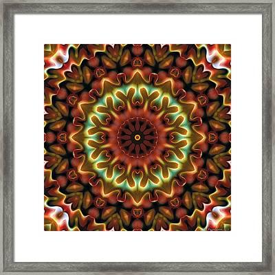 Mandala 71 Framed Print by Terry Reynoldson