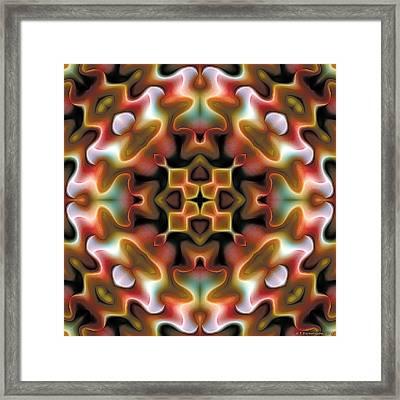 Mandala 76 Framed Print by Terry Reynoldson