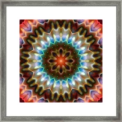 Mandala 79 Framed Print by Terry Reynoldson