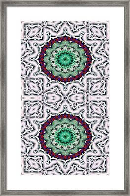 Mandala 8 For Iphone Double Framed Print by Terry Reynoldson