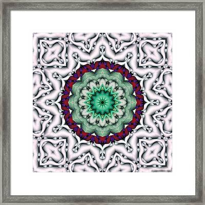 Mandala 8 Framed Print by Terry Reynoldson