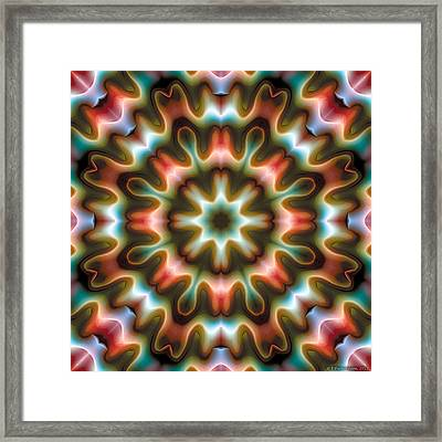 Mandala 80 Framed Print by Terry Reynoldson