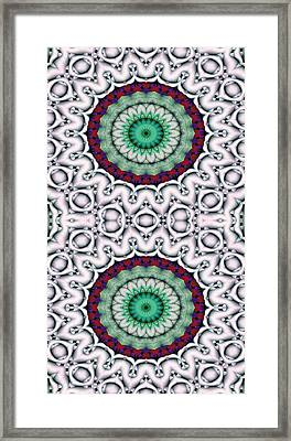 Mandala 9 For Iphone Double Framed Print by Terry Reynoldson