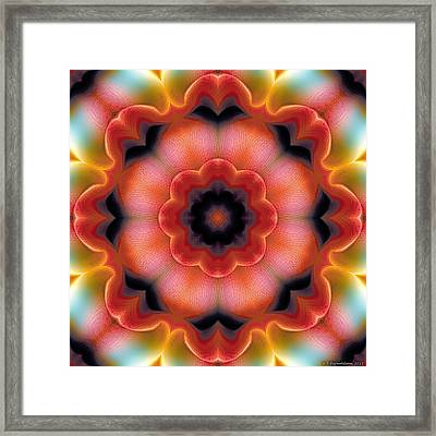Mandala 91 Framed Print by Terry Reynoldson