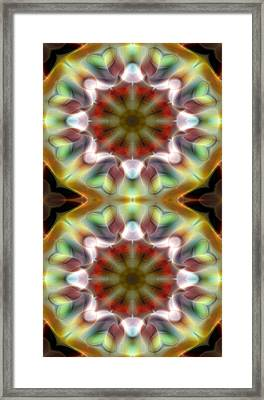 Mandala 97 For Iphone Double Framed Print