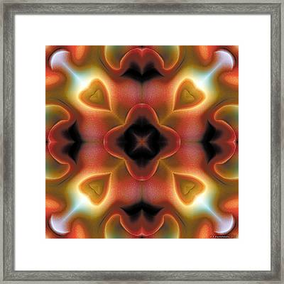 Mandala 98 Framed Print by Terry Reynoldson