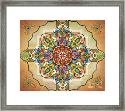 Mandala Birds Sp Framed Print by Bedros Awak
