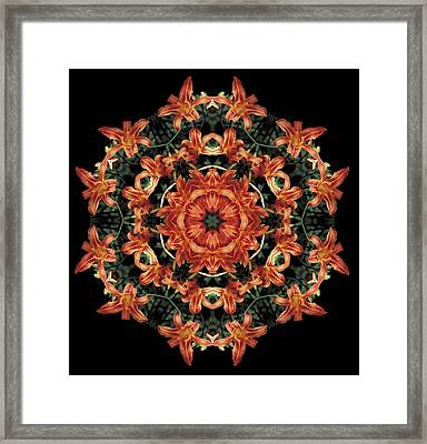 Framed Print featuring the photograph Mandala Daylily by Nancy Griswold