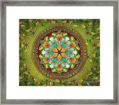 Mandala Evergreen Sp Framed Print