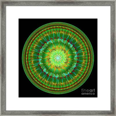 Mandala Of Life Framed Print