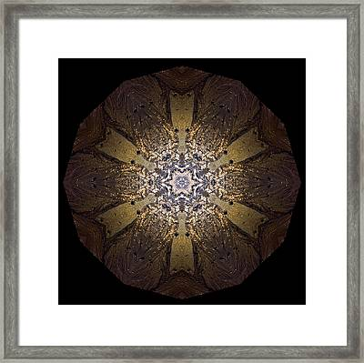 Framed Print featuring the photograph Mandala Sand Dollar At Wells by Nancy Griswold
