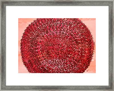 Mandala Sun Original Painting Framed Print