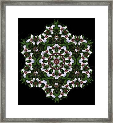 Mandala Trillium Holiday Framed Print