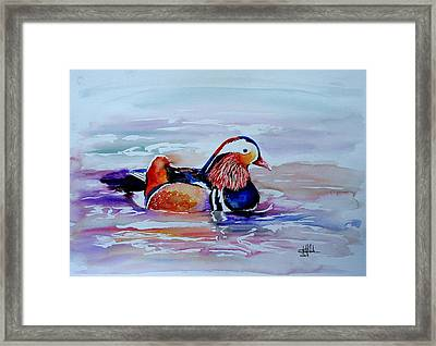 Mandarin Duck Framed Print by Isabel Salvador