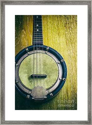 Mandolin-banjo Framed Print