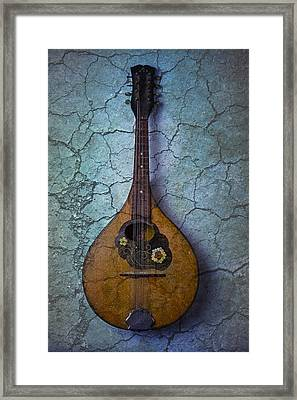 Mandolin Mystery Framed Print by Garry Gay