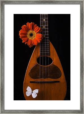 Mandolin With White Butterly Framed Print by Garry Gay