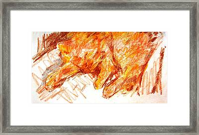 Mandy Sleeping Framed Print by Anita Dale Livaditis