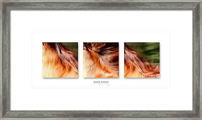 Mane Dance Triptych Framed Print