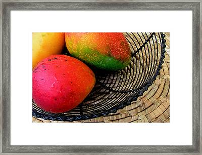 Mango In A Black Wire Basket Framed Print