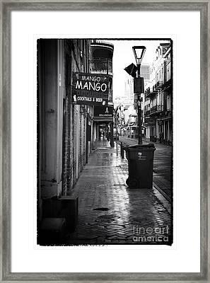 Mango Mango Framed Print