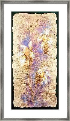 Mango Seed Tree Framed Print