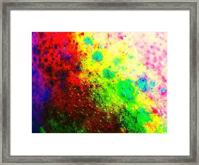 Mango Skin Framed Print