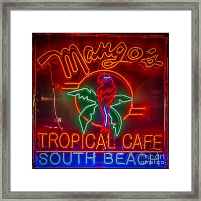Mango's South Beach Miami - Hdr Style - Square Framed Print
