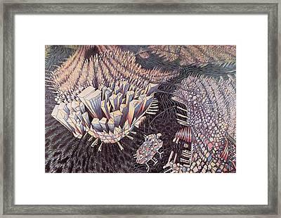 Manhattan Framed Print by Charlotte Johnson Wahl