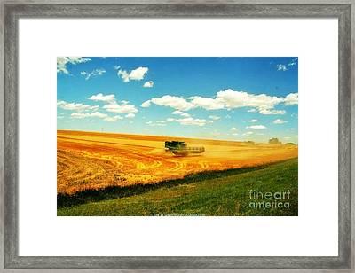 Mankato Nebraska Wheat Harvest Framed Print