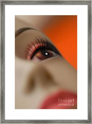 Mannequin Study 7 Framed Print by Amy Cicconi