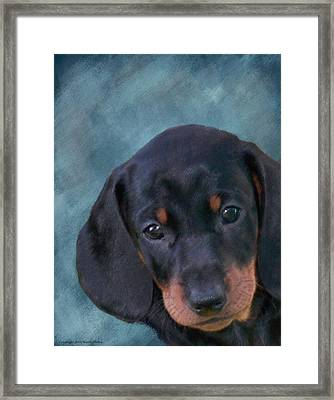 Manny Framed Print by Maryle Malloy