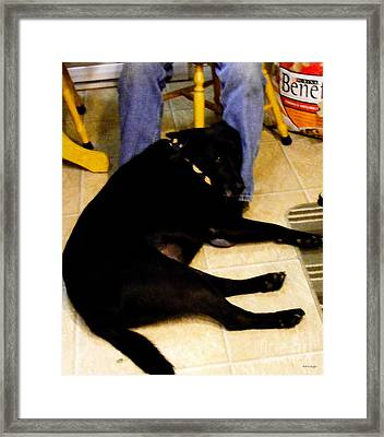 Framed Print featuring the photograph Man's Best Friend by Barbara Griffin