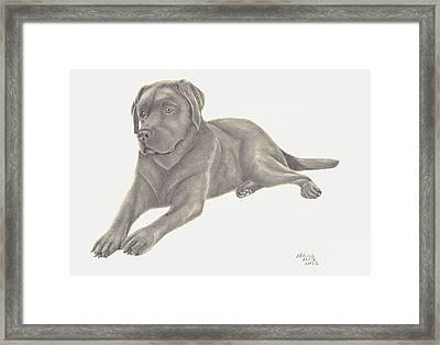 Framed Print featuring the drawing Man's Best Friend by Patricia Hiltz